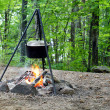 Cooking in the forest — Stock Photo