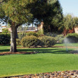 Stock Photo: Watering parkland