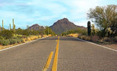 Drive through the Sonoran desert — Stok fotoğraf