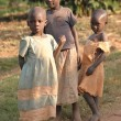 Stock Photo: Africchildren living in poor village Rushooknear city Mbararin Uganda