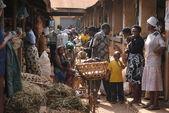 Skupina z Afriky — Stock fotografie