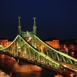 Stock Photo: Bridge in Budapest