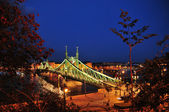 Bridge in Budapest — Stock Photo