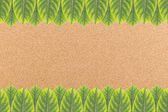 Cork board background with green leaves frame — Stok fotoğraf