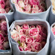 Pink Roses wrapped in paper - Stock Photo
