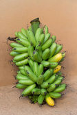 Banana bunch — Stock Photo