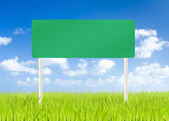 Blank road sign on green grass and blue sky background — Stock Photo