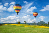 Hot air balloon over the yellow flower field with mountain and blue sky background — Stock Photo