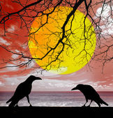 Silhouette crows with dead tree background — Stock Photo