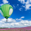 Stock Photo: Hot air balloon over cosmos flower fields with blue sky background