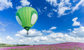 Hot air balloon over cosmos flower fields with blue sky background — Stock Photo
