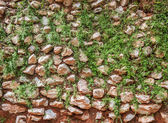 Stone wall background with dirt and leaves — Photo