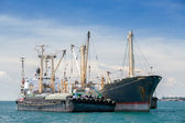 Commercial Ship. Sea Transportation and Logistics — Stock Photo