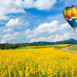 Hot air balloon over Yellow flower fields against blue sky — Stock Photo #39787189