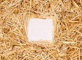 Quadro de palha — Foto Stock
