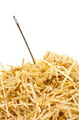 Needle in a haystack — Stock Photo