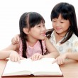 Intelligent little girl reading a book — Stock Photo #28035179