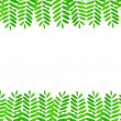 Green fresh leaves frame on white background  — Stock Photo