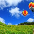 Stock Photo: Hot air balloon on Yellow flower field Tung BuTong (Mexicsu