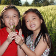 Happy two asian girls — Stock Photo #28094457