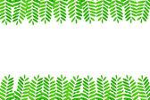 Green fresh leaves frame on white background — Stock Photo