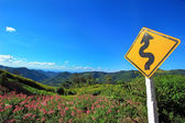 Winding road sign with flower bloom on mountain — Stock Photo