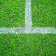 Grass soccer field  — Stock Photo #28110799