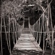 Stock Photo: Rope bridge