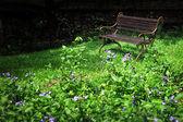 Vintage Bench in the garden — Stock Photo