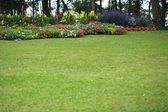 Resmi peyzajlı bahçe park — Stok fotoğraf