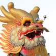 Head of a golden dragon on white isolated background — Stock Photo