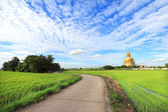Big buddha with rice field — Stock Photo