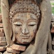 Head of buddha — Foto Stock
