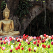 Foto Stock: Buddhstatue with tulip foreground