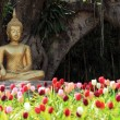 图库照片: Buddhstatue with tulip foreground