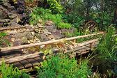 Деревянное колесо воды в саду — Стоковое фото