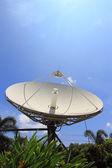 Sehr große satellitenschüssel — Stockfoto