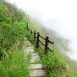 Walkway on the mountain in the fog, Chiang mai Thailand — Stock Photo