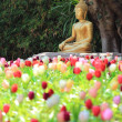 Photo: Buddhstatue with tulip foreground