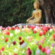 Стоковое фото: Buddhstatue with tulip foreground