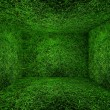 Grass room — Stock Photo