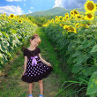 Cute little happy asian girl with sunflower in summer field — Stock Photo #28753583