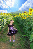 Cute little happy asian girl with sunflower in summer field — Stock Photo
