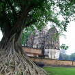 Banyan front of stupa temple at Sukhothai — Stock Photo
