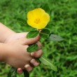 Child hand giving a flower — Stock Photo