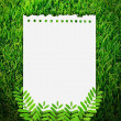 Paper on grass background — Stock Photo