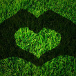 Shadow hands forming heart on Green grass texture — Stock Photo