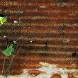 Rusty corrugated iron metal fence — Stock Photo