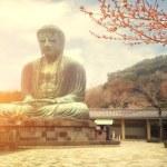 Famous Great Buddha bronze statue in Kamakura, Kotokuin Temple. — Stock Photo #49239351