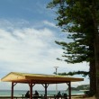 Manly Beach 6 — Stock Photo